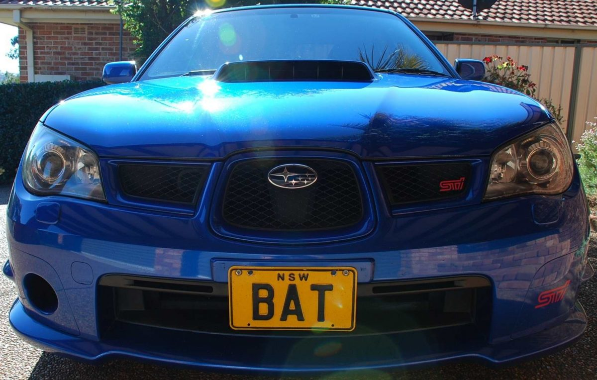 Bat's View